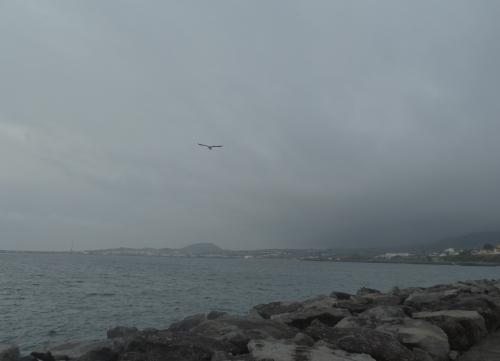 Avant la tempête 1.JPG