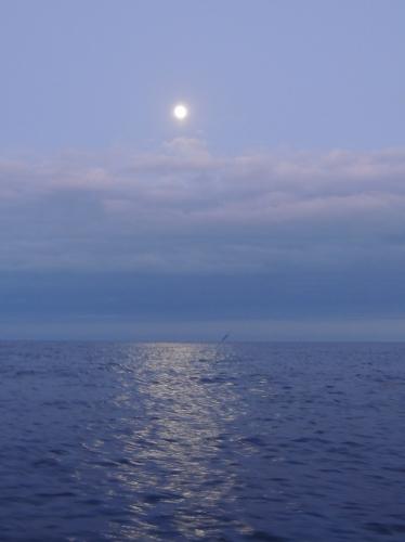 Lever de lune 26 juin.JPG