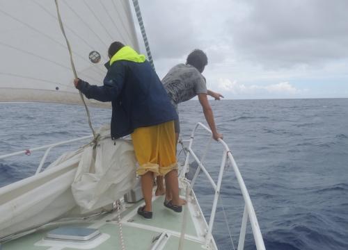 Tom et Alice dauphins 20 juin.JPG