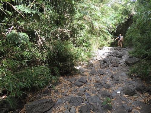 Lit rivière 4.JPG